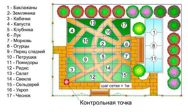Схема декоративного огорода