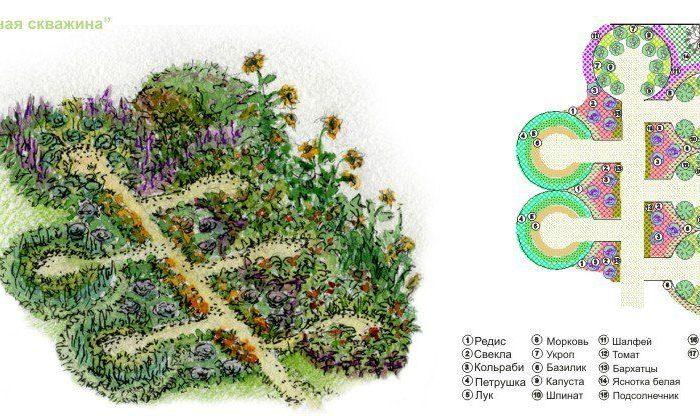 Обустройство декоративного огорода