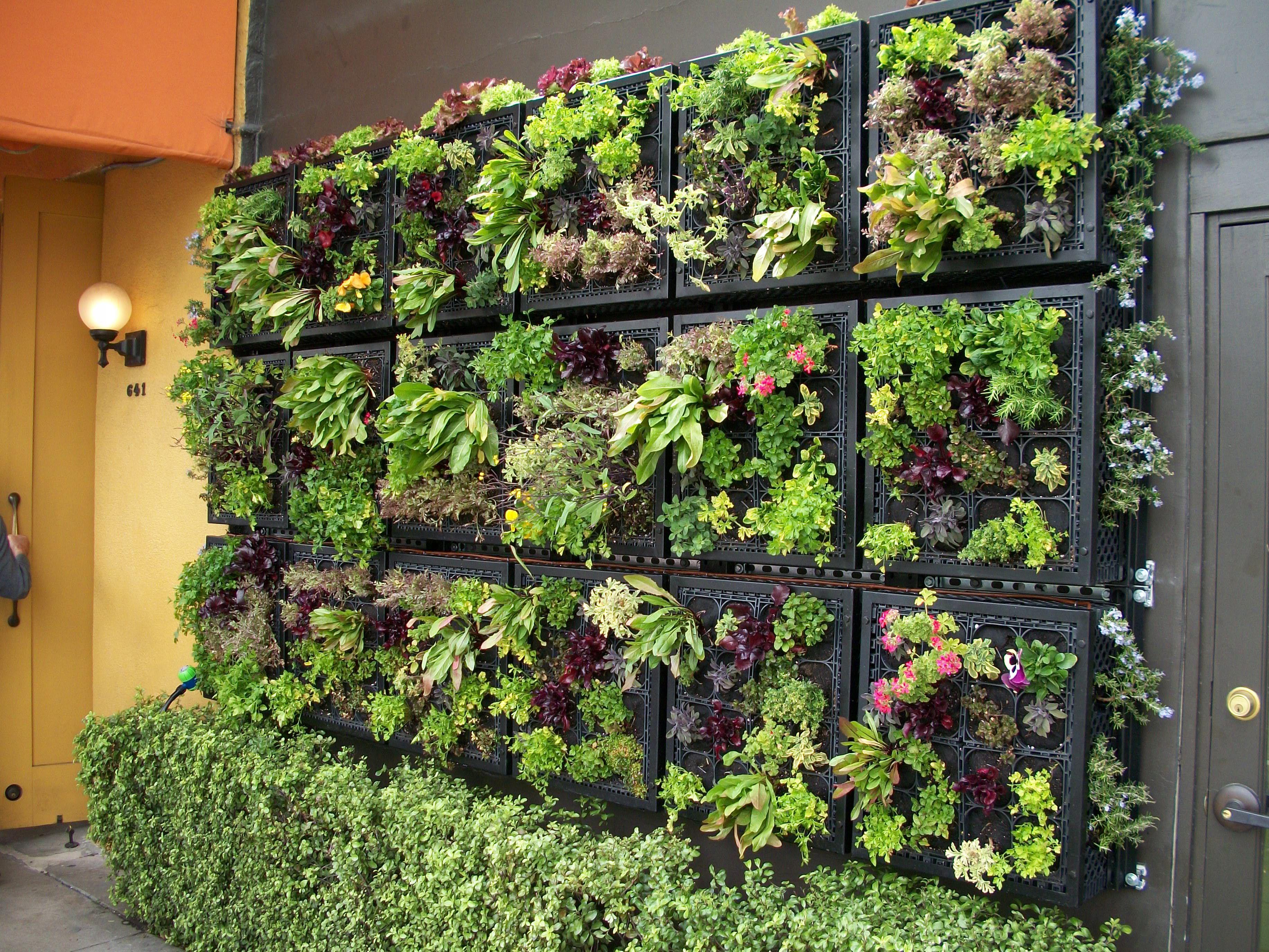 Interesting ideas for decor: вертикальный огород. разные иде.