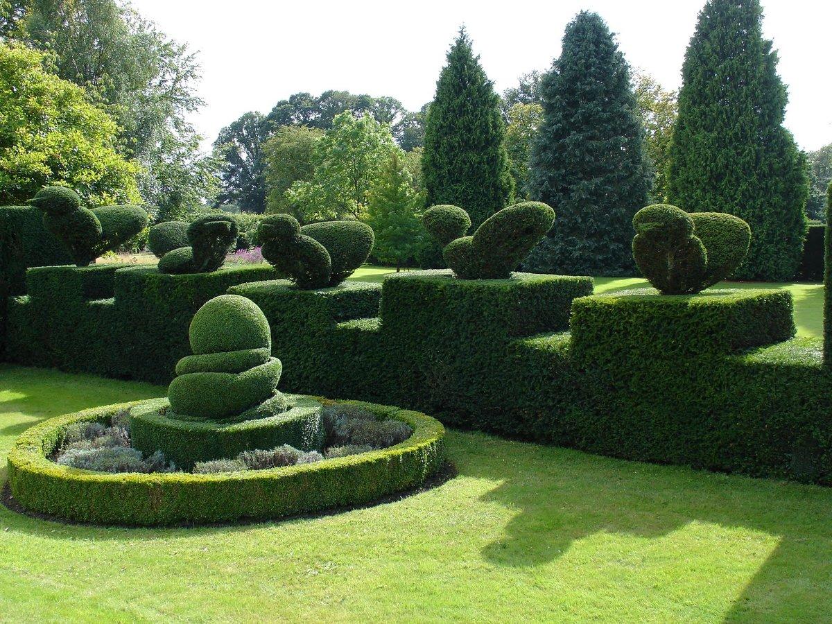 Сад Левенс Холл фото